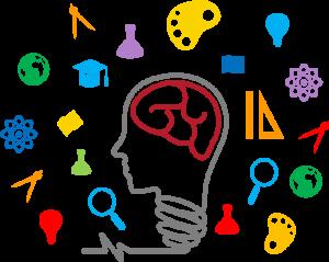 brain 300x239 - CAT4学生认知能力测试